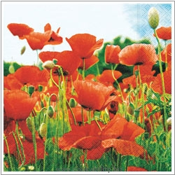 Triple-Ply Poppy Field Napkins. Original product image, © Cookability